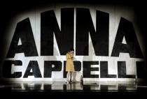 Arti Inferiori 2014-Maria Paiato-Anna Cappelli (1)