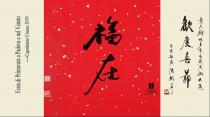 Capodanno cinese 2019. A Padova e nel Veneto  意大利帕多瓦及威内托大区欢度春春