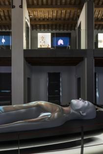 modello del corpo umano