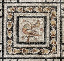 NOTTURNI D'ARTE 2017. Padova attraverso i secoli-La Padova di Tito Livio-Museo Archeologico