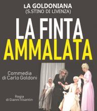 Appuntamenti con il Teatro Veneto 2019-XIV edizione-La Finta Ammalata